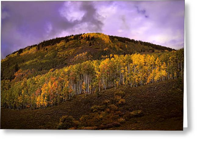 Greeting Card featuring the photograph Autumn Hillside by Ellen Heaverlo