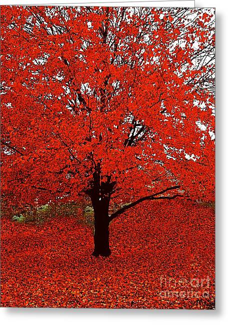Red Tree Impressions #1 Red Greeting Card by Saundra Myles