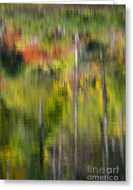 Autumn Impressions Greeting Card by Mike  Dawson