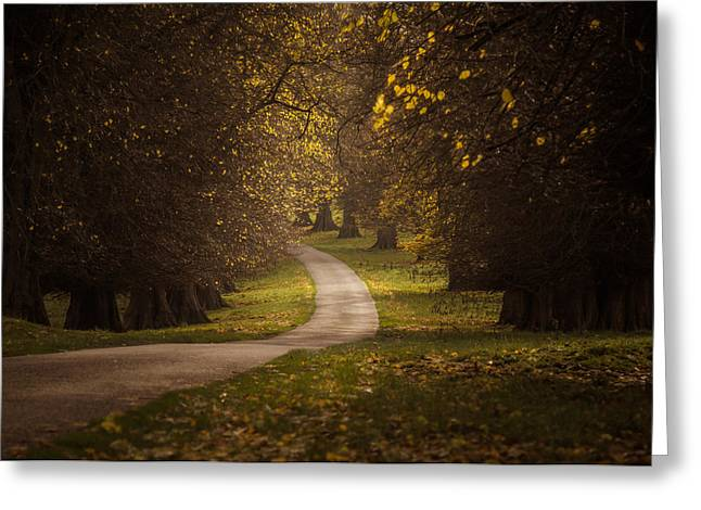 Autumn In Calke Abbey Greeting Card