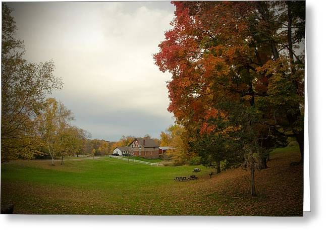 Autumn In Connecticut. Greeting Card by Nestor m Montanez