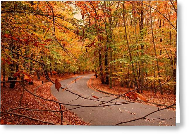 Autumn In Holmdel Park Greeting Card