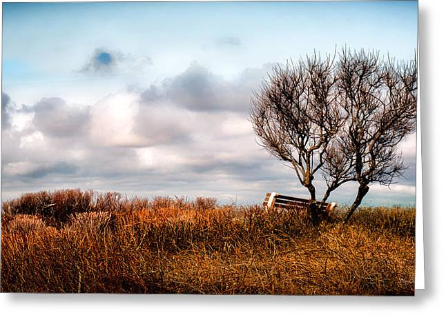 Autumn In Maine Greeting Card by Bob Orsillo