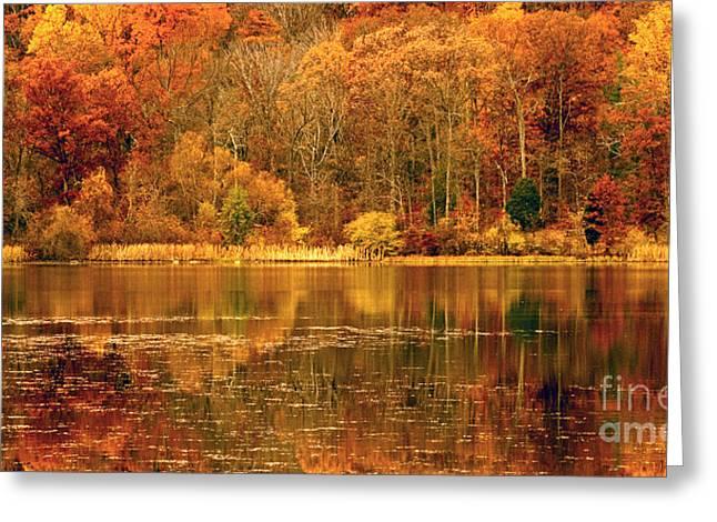 Autumn In Mirror Lake Greeting Card