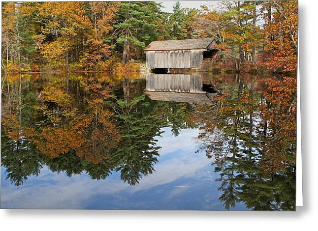 Autumn In New England Greeting Card by John Babis