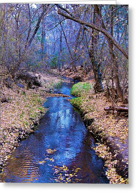 Greeting Card featuring the photograph Autumn In New Mexico by John Babis
