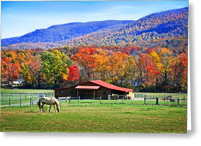 Autumn In Rural Virginia  Greeting Card