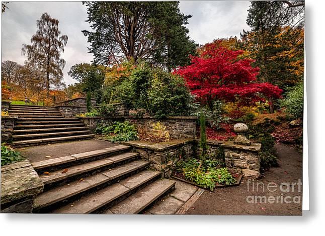 Autumn In The Garden Greeting Card