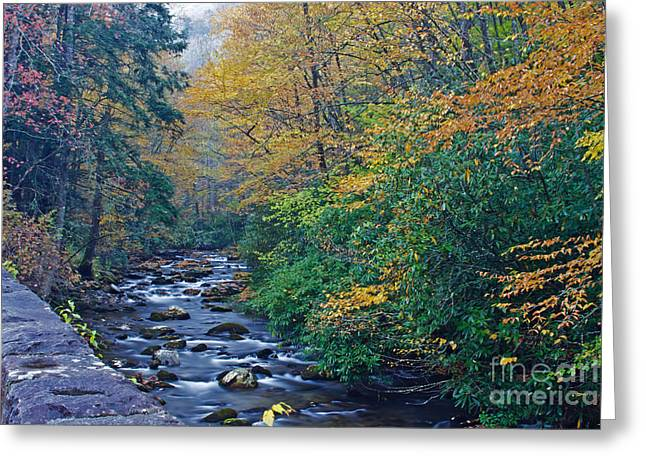 Autumn In The Great Smoky Mountains V Greeting Card