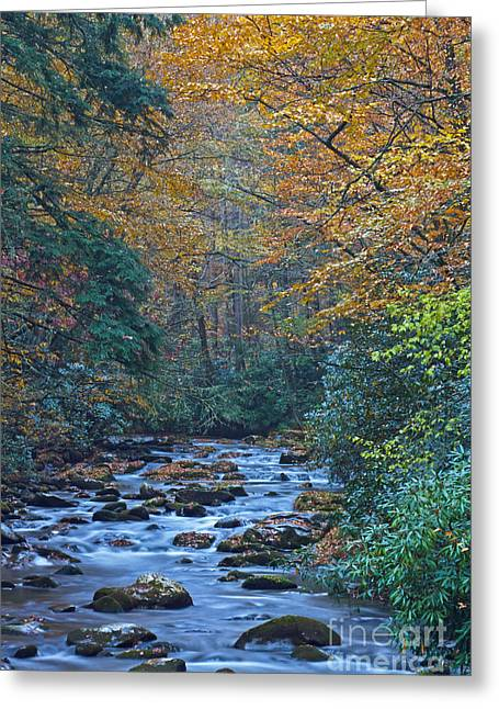 Autumn In The Great Smoky Mountains Vi Greeting Card