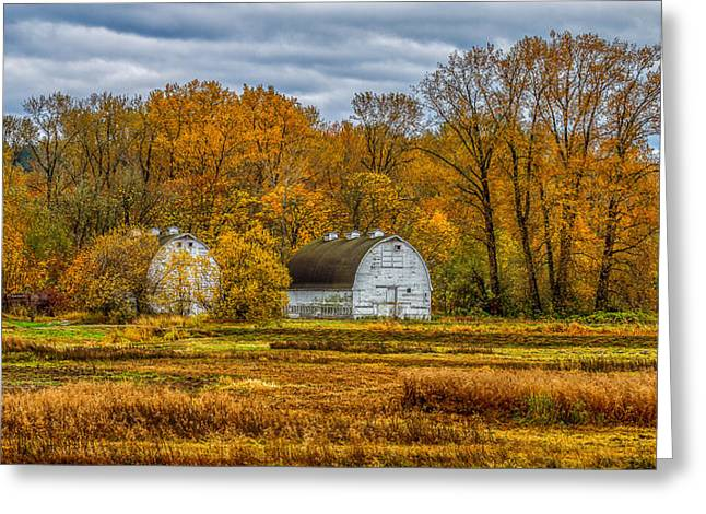 Autumn In The Meadows Greeting Card by Ken Stanback