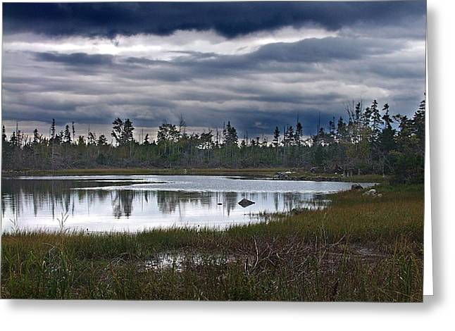Autumn In The Salt Marshes Greeting Card by George Cousins