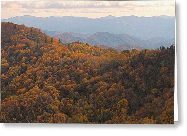 Autumn In The Smoky Mountains Greeting Card by Dan Sproul