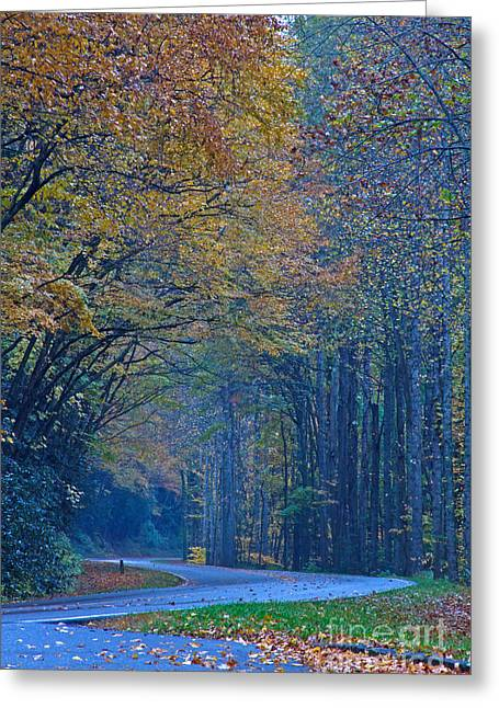 Autumn In The Smoky's  Greeting Card