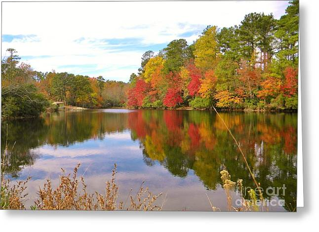 Autumn In The South Greeting Card