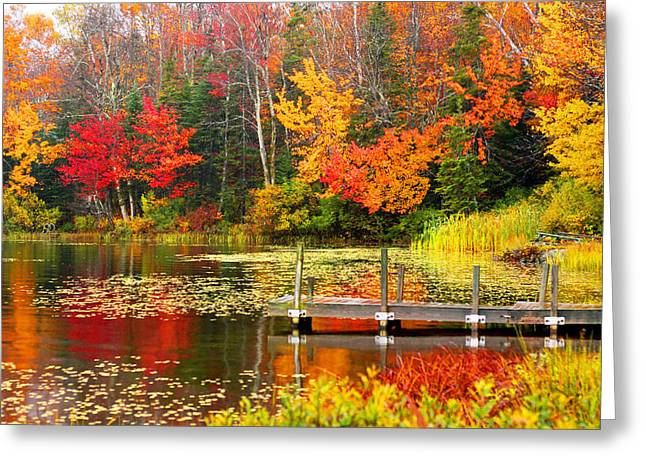 Autumn In Vt Greeting Card