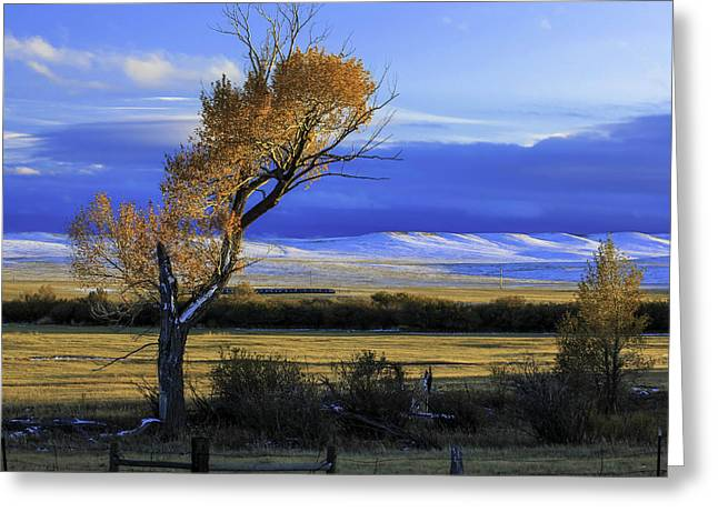 Autumn In Wyoming Greeting Card