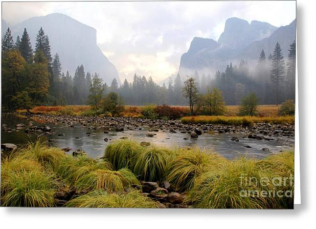 Autumn In Yosemite Valley Greeting Card