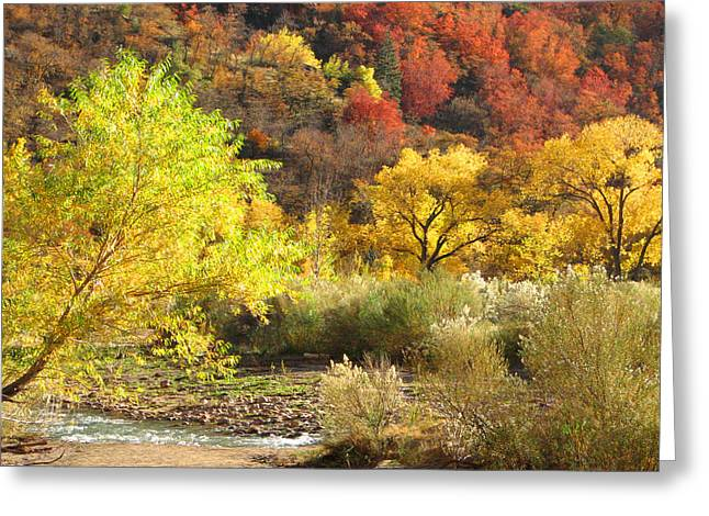Autumn In Zion Greeting Card