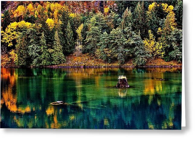 Autumn Jade Greeting Card by Benjamin Yeager