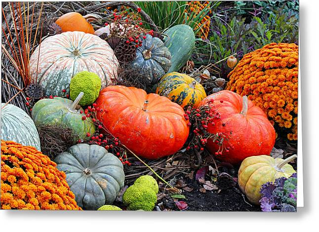 Autumn Joy Greeting Card