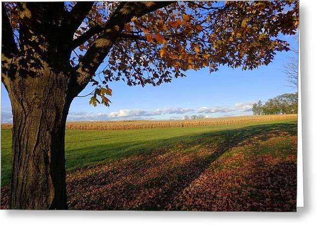 Greeting Card featuring the photograph Autumn Landscape by Joseph Skompski