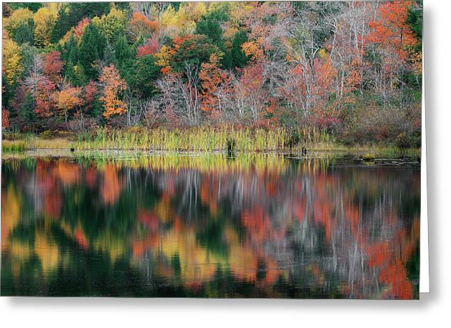 Autumn Landscape Reflections Greeting Card by Bill Wakeley