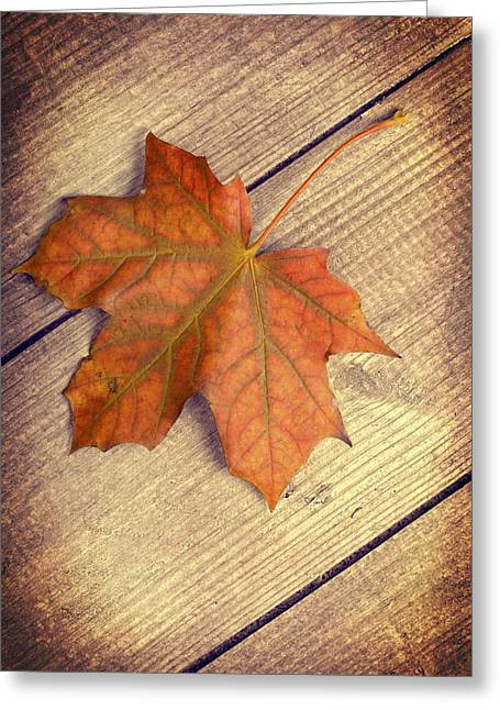 Autumn Leaf Greeting Card by Amanda Elwell