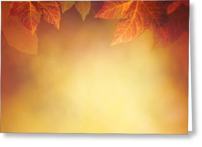 Autumn Leaf Greeting Card by Mythja  Photography