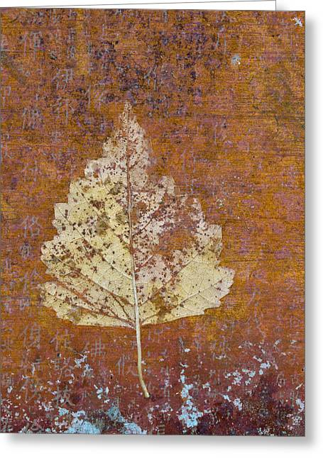 Autumn Leaf On Copper Greeting Card by Carol Leigh