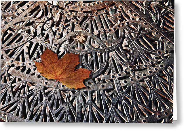 Autumn Leave On Iron Grate Greeting Card by Larry Butterworth