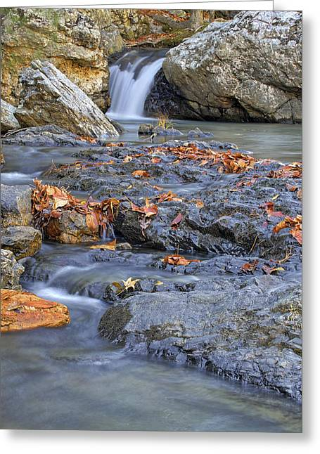 Autumn Leaves At Little Missouri Falls - Arkansas - Waterfall Greeting Card