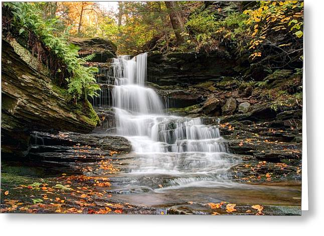 Autumn Leaves Below The Nameless Hidden Waterfall Greeting Card