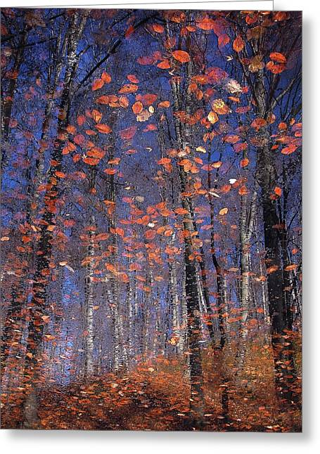 Autumn Leaves Greeting Card by Florentin Vinogradof