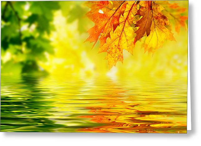 Autumn Leaves Images Greeting Card