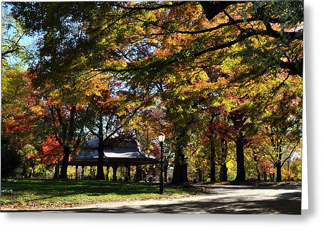 Autumn Leaves In Prospect Park Greeting Card