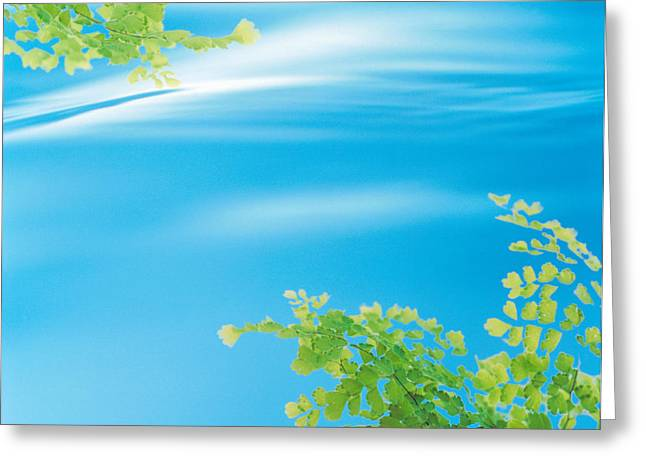 Autumn Leaves In Water Greeting Card by Panoramic Images