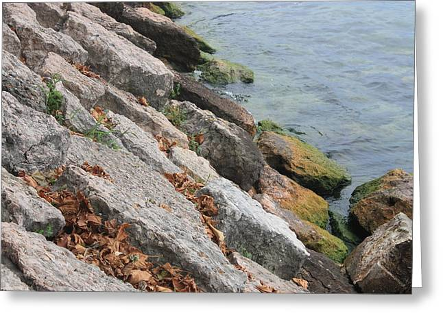 Greeting Card featuring the photograph Autumn Leaves Lake Garda Italy by Jean Walker