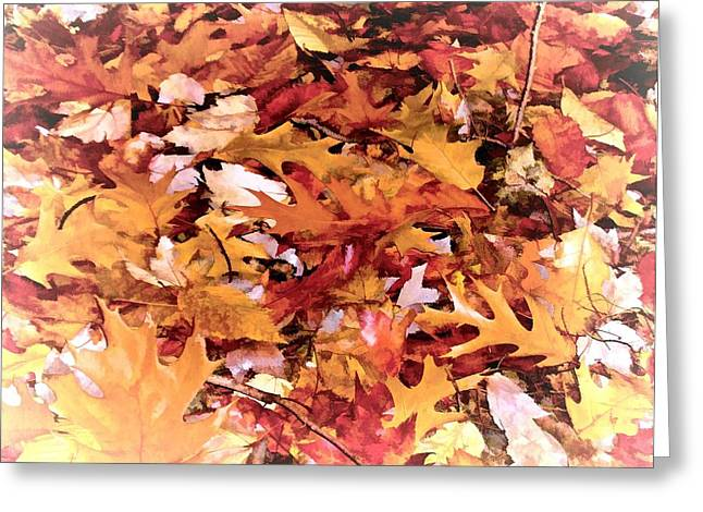 Autumn Leaves On The Ground In New Hampshire In Muted Colors Greeting Card