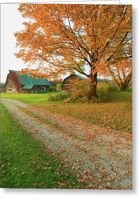 Autumn Leaves, Red Barn And Dirt Path Greeting Card