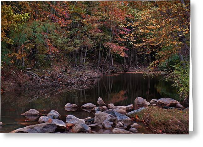 Autumn Leaves Reflecting In The Stream Greeting Card
