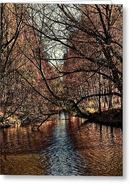 Autumn Light By Leif Sohlman Greeting Card