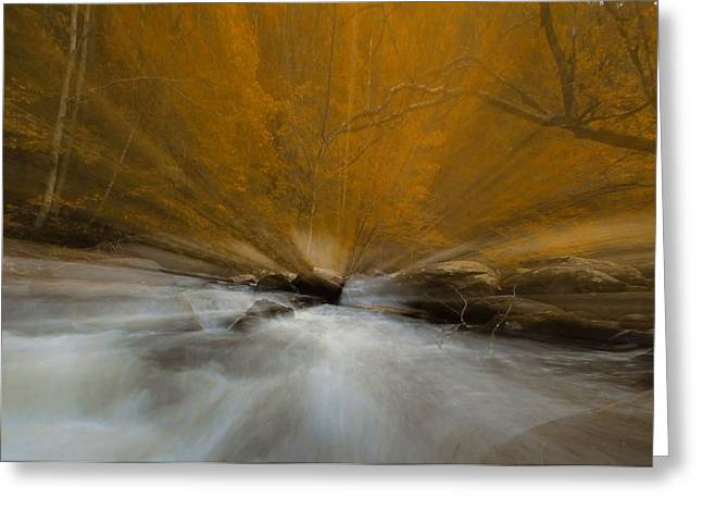 Autumn Light On Little River Greeting Card by Dan Sproul
