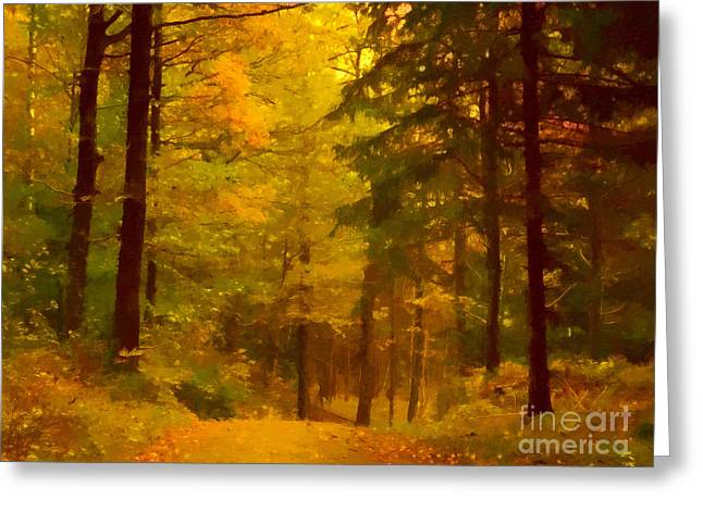 Autumn Lights Greeting Card by Lutz Baar