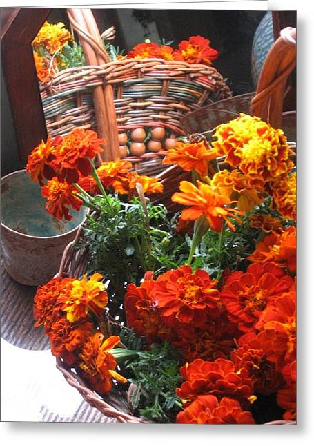 Autumn Marigolds Greeting Card