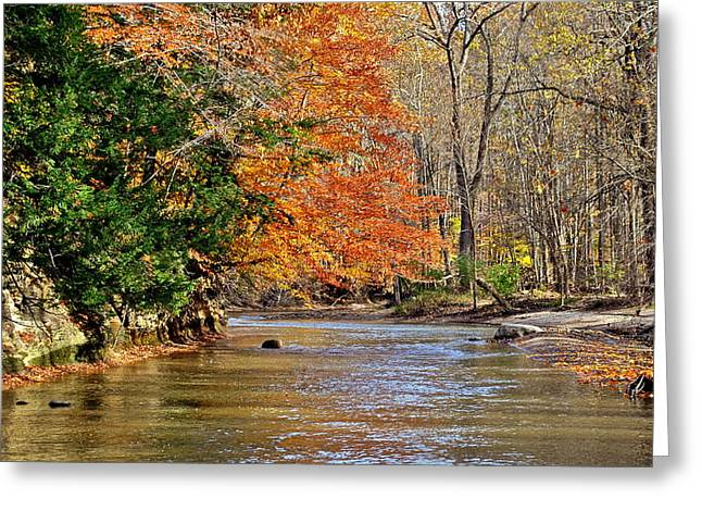 Autumn Meets Winter Greeting Card by Frozen in Time Fine Art Photography