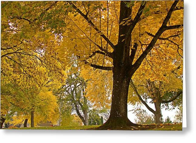 Autumn Memories Greeting Card by Beverly Guilliams
