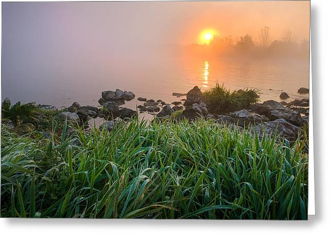 Autumn Morning II Greeting Card by Davorin Mance