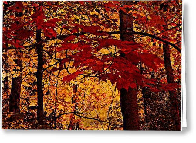 Autumn Mosiac  Greeting Card by Dianne  Lacourciere