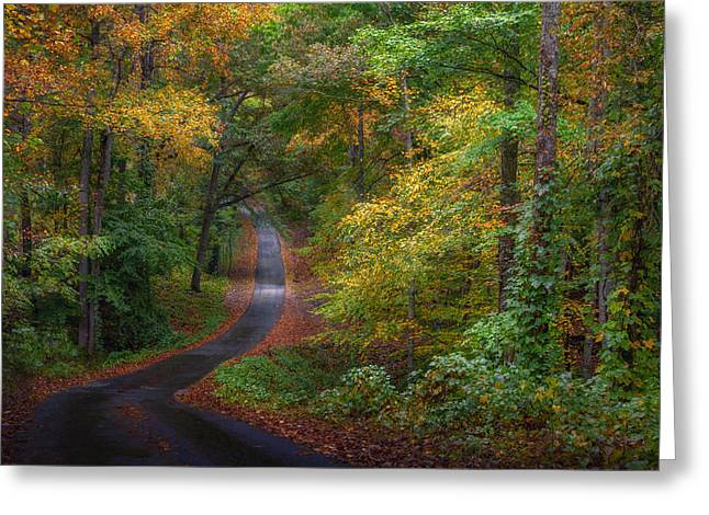 Autumn Mountain Road Greeting Card by William Schmid